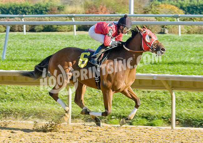 Shamroge winning at Delaware Park on 10/22/12