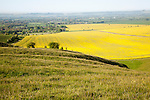 View over Pewsey Vale from chalk scarp slope of Milk Hill, Alton Barnes and Alton Priors, Wiltshire, England