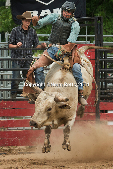 Ultimate Rodeo Tour action, July 19&amp;20th, 2014, CALHOUN STABLES, 1590 Durant Rd, Breslau, Ontario, Canada.<br /> <br /> photos by Norm Betts <br /> &copy;2014, Norm Betts<br /> tel 416 460 8743