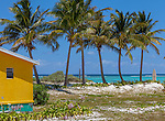 Anegada, British Virgin Islands, Caribbean<br /> A line of palm trees on the edge of a white sand beach with a yellow cottage at Cow Wreck Bay