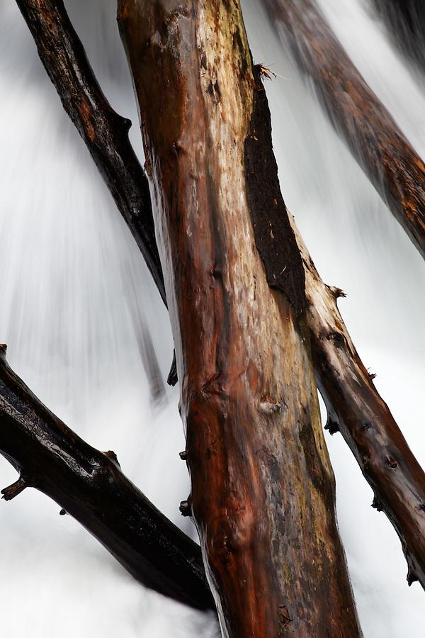Little Stony Creek pouring through fallen driftwood logs, Pembroke, Giles County, Virginia, USA.