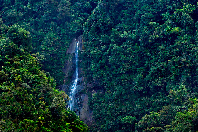 The Salto Falls in Tapanti National Park.  The park is a cloud forest in the Orosi Valley surrounded by the Talamancan Mountains and one of the rainest areas in all of Costa Rica.
