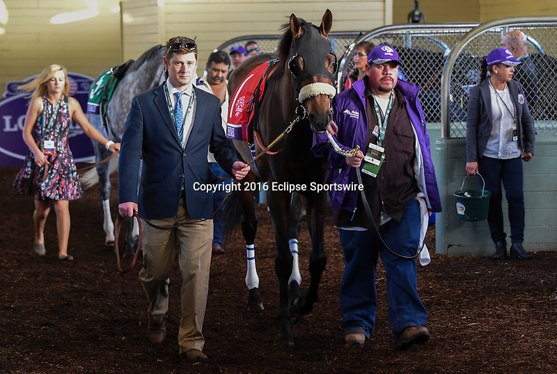 ARCADIA, CA - NOVEMBER 5: Arrogate #10, ridden by Mike Smith, finishes first ahead of California Chrome #4, ridden by Victor Espinoza, in the the Breeders' Cup Classic during day two of the 2016 Breeders' Cup World Championships at Santa Anita Park on November 5, 2016 in Arcadia, California. (Photo by Eclipse Sportswire/Breeders Cup)
