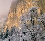 Clearing Storm, El Capitan, Yosemite National Park, California