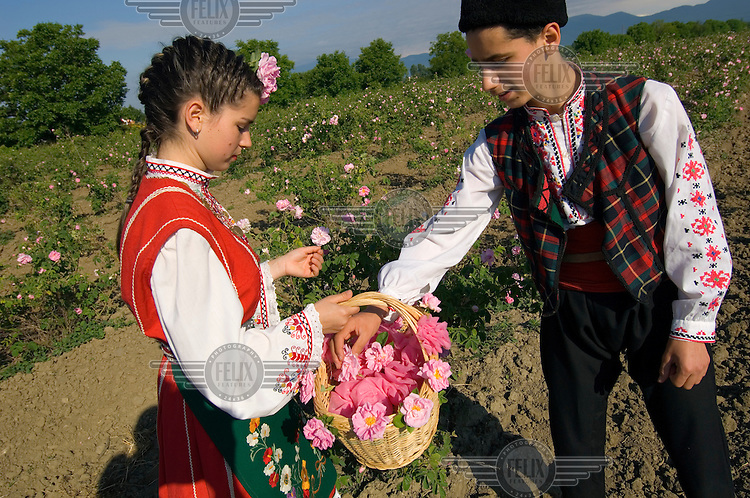 Local people dressed in traditional dress perform rose picking as part of the official celebrations of the Festival of the Roses.