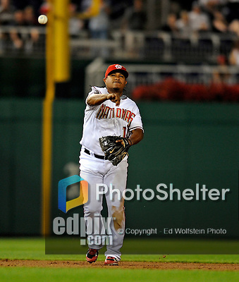 15 August 2008: Washington Nationals' infielder Ronnie Belliard in action against the Colorado Rockies at Nationals Park in Washington, DC.  The Rockies edged out the Nationals 4-3, handing the last place Nationals their 8th consecutive loss. ..Mandatory Photo Credit: Ed Wolfstein Photo