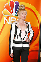 LOS ANGELES - AUG 3:  Anne Heche at the NBC TCA Press Day Summer 2017 at the Beverly Hilton Hotel on August 3, 2017 in Beverly Hills, CA