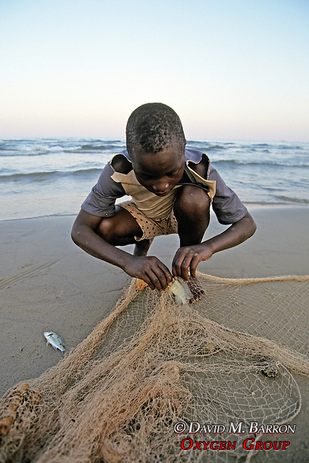 Boy Fishing With Net