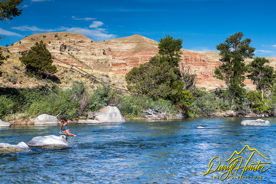 Woman fly-fishing the Wind River as it flows through the badlands of Dubois Wyoming