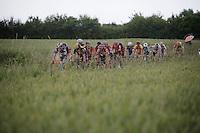 peloton through the fields<br /> <br /> Belgian National Road Cycling Championships 2016<br /> Les Lacs de l'Eau d'Heure