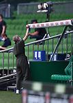 Die Auswaechselbaenke werden vor dem Spiel geputzt.<br /><br />Sport: Fussball: 1. Bundesliga:: nphgm001:  Saison 19/20: 34. Spieltag: SV Werder Bremen - 1. FC Koeln, 27.06.2020<br /><br />Foto: Marvin Ibo GŸngšr/GES/Pool/via gumzmedia/nordphoto