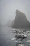 Haystacks in the fog on Ruby Beach