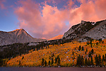 Fall color in the High Sierra up the Hilton Creek Drainage at Davis Lake. The fields of aspen are turning gold and red and a first day of fall storm moved through creating a beautiful moody sunrise.