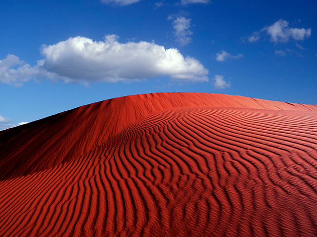 Dunes in Kalahari desert of South Africa