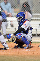 March 19, 2010:  Catcher Amauris Valdez (23) of the New York Mets organization during Spring Training at the Roger Dean Stadium Complex in Jupiter, FL.  Photo By Mike Janes/Four Seam Images