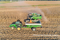 63801-12602 Harvesting corn and unloading into grain cart in fall-aerial  Marion Co. IL