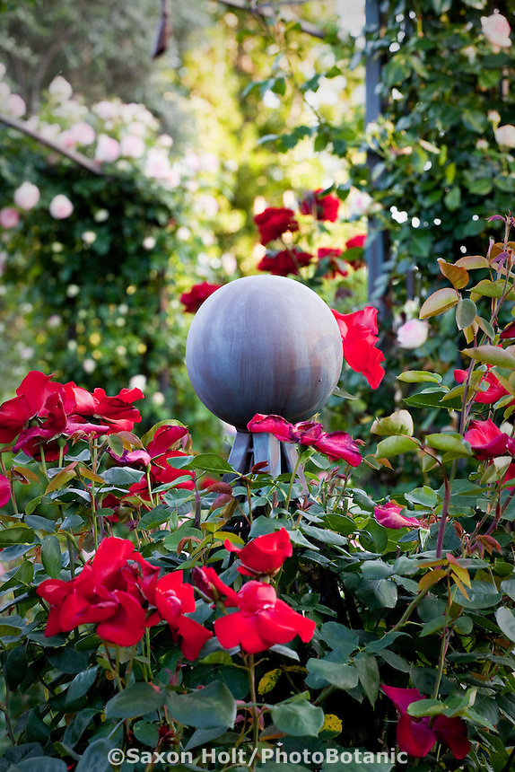 Red flower rose 'Altissimo' growing on pillar topped with metal ball ornament