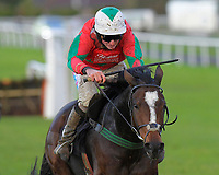Winner of The Tie The Knot Catering Handicap Hurdle Poucor ridden by Marc Goldstein and trained by Mick Channon during Horse Racing at Plumpton Racecourse on 4th November 2019