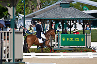 NZL-Lucy Jackson (KILCOLTRIM AMBASSADOR) 2012 USA-Rolex Kentucky 3 Day Event: DAY 3 - final day of Dressage: INTERIM PLACING AFTER DRESSAGE: 30TH