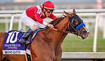 January 25, 2020: Mucho Gusto #10, ridden by Irad Ortiz, charges to the front to win the Pegasus World Cup Invitational during the Pegasus World Cup Invitational at Gulfstream Park Race Track in Hallandale Beach, Florida. John Voorhees/Eclipse Sportswire/CSM