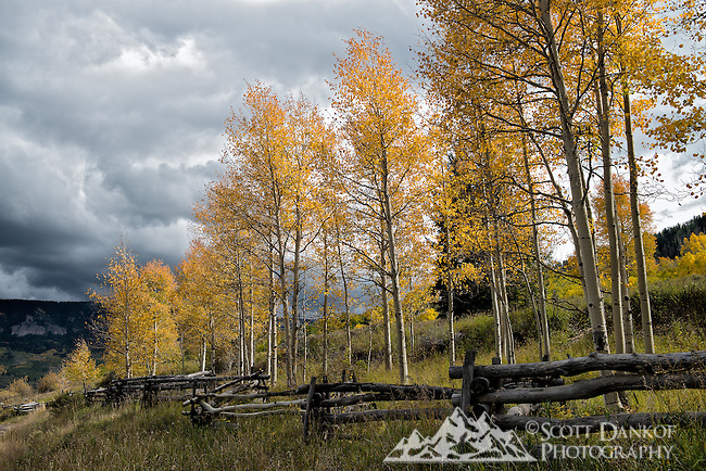 Rail fence along the backroad to Silver Jack Reservoir/Owl Creek Pass, Colorado.