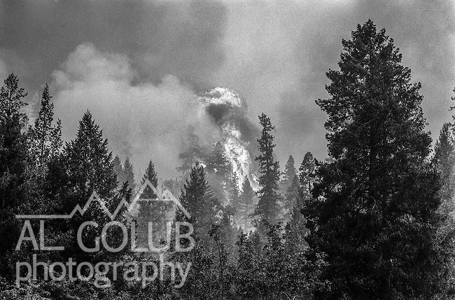 September 4, 1987 Greeley Hill, California -- Stanislaus Complex Fire  --  Fire flares up near Greeley Hill.  The Stanislaus Complex Fire consumed 28 structures and 145,980 acres.  One US Forest Service firefighter, David Ross Erickson, died from a tree-felling accident.