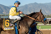"ARCADIA, CA. SEPTEMBER 30: #6 Mubtaahij, ridden by Drayden Van Dyke, wins the Awesome Again Stakes (Grade l) ""Win and You're In Classic Division"" on September 30, 2017 at Santa Anita Park in Arcadia, CA.(Photo by Casey Phillips/Eclipse Sportswire/Getty Images)"