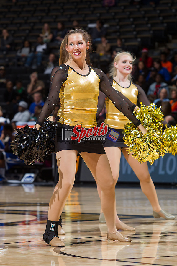 The Wake Forest Demon Deacons dance team entertains the crowd during a timeout in the game against the Brevard Tornados at the LJVM Coliseum on November 1, 2013 in Winston-Salem, North Carolina.  The Demon Deacons defeated the Tornados 93-66. (Brian Westerholt/Sports On Film)