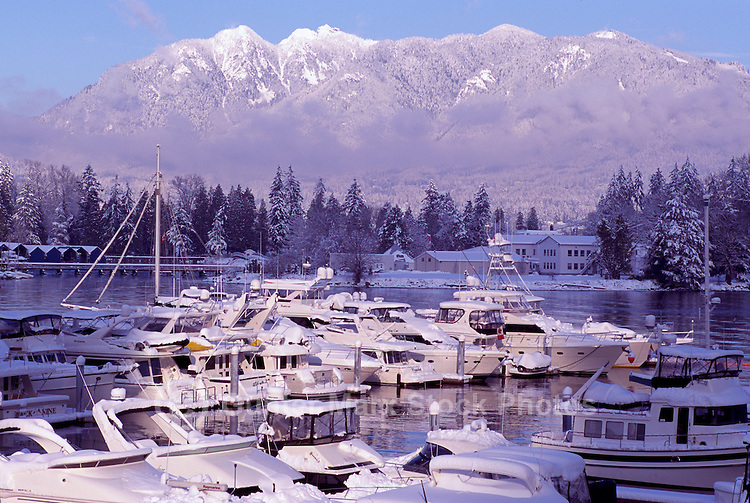 Vancouver, BC, British Columbia, Canada - Boats in Marina at Coal Harbour, Stanley Park and Grouse Mountain (Coast Mountains) in background, Winter