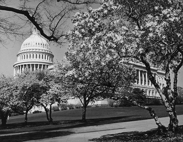 Exterior of Capitol Hill in winter in May 1984. (Photo by CQ Roll Call via Getty Images)