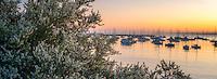 Monterey Harbor and Marina with sunrise. Monterey, California