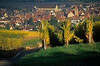 Europe/France/Alsace/68/Haut-Rhin/Eguisheim : Village et vignoble