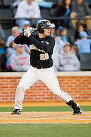 Jack Carey (20) of the Wake Forest Demon Deacons at bat against the North Carolina Tar Heels at Wake Forest Baseball Park on March 9, 2013 in Winston-Salem, North Carolina.  The Tar Heels defeated the Demon Deacons 20-6.  (Brian Westerholt/Four Seam Images)