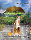 PAUL,REALISTIC ANIMALS, REALISTISCHE TIERE, ANIMALES REALISTICOS, paintings+++++NW_Fruit-Cat-B,USLGNW03,#a#, EVERYDAY ,funny photos