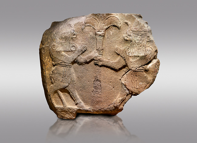Picture & image of Hittite monumental relief sculpted orthostat stone panel from Water Gate Basalt, Karkamıs, (Kargamıs), Carchemish (Karkemish), 900-700 B.C.  Anatolian Civilisations Museum, Ankara, Turkey.<br /> <br /> Two bull-men holding the trunk of the tree in the middle. The faces of the figures, having tufts in both temples over the chain, have been depicted from the front direction. The horned figures with bull-like ears and legs have human bodies. <br /> <br /> On a gray background.