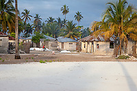 Jambiani, Zanzibar, Tanzania.  Village Scene, Early Morning, White Sand.