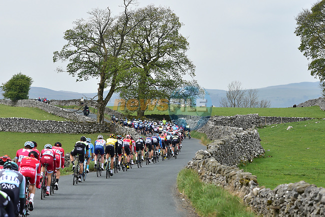 The peloton in action during Stage 3 of the Tour de Yorkshire 2017 running 194.5km from Bradford/Fox Valley to Sheffield, England. 30th April 2017. <br /> Picture: ASO/P.Ballet | Cyclefile<br /> <br /> <br /> All photos usage must carry mandatory copyright credit (&copy; Cyclefile | ASO/P.Ballet)