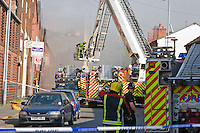 Copyright All rights reserved Stalingrad O'Neill<br />