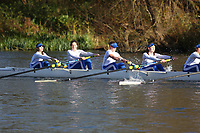 Crew: 79   W J16 8+   Latymer Upper School Boat Club   LTU-SCAVAZZA-MURPHY<br /> <br /> Wallingford Head 2017<br /> <br /> To purchase this photo, or to see pricing information for Prints and Downloads, click the blue 'Add to Cart' button at the top-right of the page.
