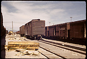 Comparison of Standard gauge and N.G. box cars at Alamosa<br /> D&amp;RGW  Alamosa, CO  5/30/1962