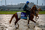 November 1, 2018: Line of Duty (IRE), trained by Charlie Appleby, exercises in preparation for the Breeders' Cup Juvenile Turf at Churchill Downs on November 1, 2018 in Louisville, Kentucky. Carolyn Simancik/Eclipse Sportswire/CSM