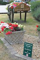 Summer flower display to celebrate the Golden Jubilee of Her Majesty, Queen Elizabeth II, in Farnham, Surrey.