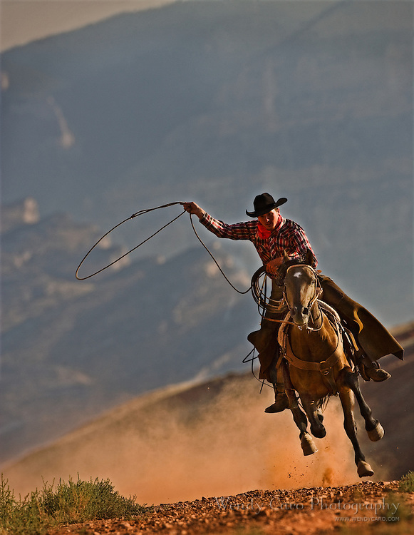 Western wrangler at a gallop, roping a mustang in the .big Horn mountains in Wyoming.