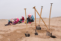 Workers take lunch break while planting seedlings of sacsaoul in the desert area as part of an afforestation project in Minqin county of northwestern China's Gansu province, 11 March 2017. Minqin county is located in between the Tengger Desert and the Badain Jaran Desert.