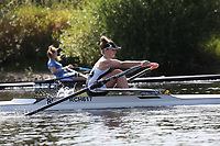 Race: 91  W.J16.1x  [119]Ross RC - ROS-Sykes  vs [122]Royal Chester - RCH-Tongue<br /> <br /> Ross Regatta 2017 - Monday<br /> <br /> To purchase this photo, or to see pricing information for Prints and Downloads, click the blue 'Add to Cart' button at the top-right of the page.