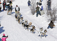 "Rick Larson and his Iditarider, a ""Wounded Warrior"" from Walter Reed Medical Center run past race fans in Anchorage on Saturday March 1st during the ceremonial start day of the 2008 Iidtarod Sled Dog Race."