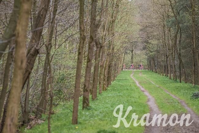 Team Trek-Segafredo seen through the forest<br /> <br /> 105th Scheldeprijs 2017 (1.HC)<br /> 1 Day Race: Mol &rsaquo; Schoten (BEL/202km)