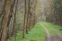 Team Trek-Segafredo seen through the forest<br /> <br /> 105th Scheldeprijs 2017 (1.HC)<br /> 1 Day Race: Mol &rsaquo; Schoten (BEL/202km)