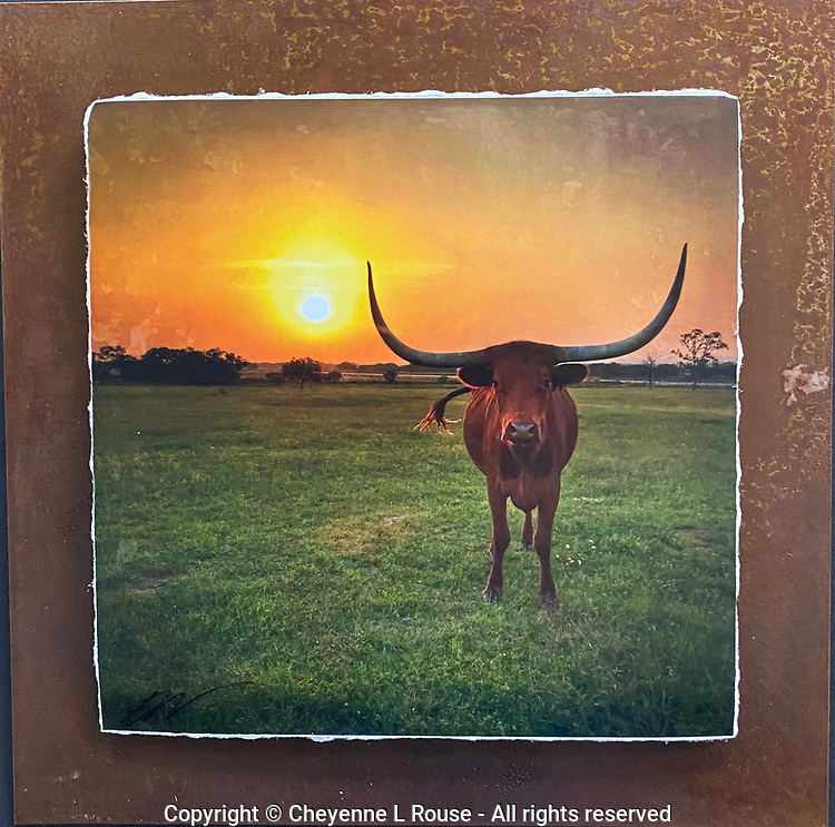 Sunset Standoff - Mixed Media - Texas<br />