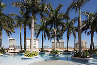 Pool palm trees at Four Seasons, Miami, FL